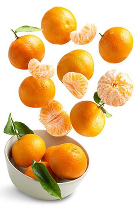 Citrus in lahore